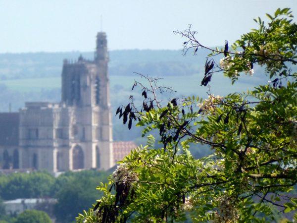 La cathédrale de Sens vue depuis la boucle des Carrelottes, à Saint-Martin-du-Tertre